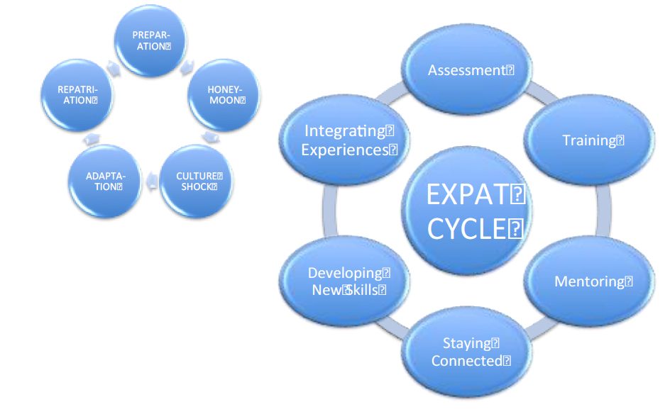expat-cycle
